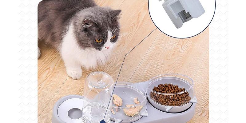 Marco Arezio - Consulente materie plastiche -  Ciotola per cibo e acqua del gatto dispenser
