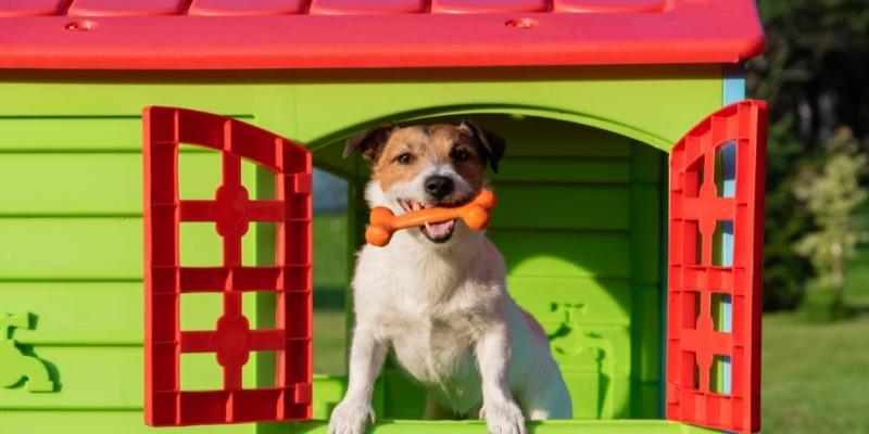 https://www.arezio.it/ - Granuli in polipropilene riciclato per le cucce di cani e gatti