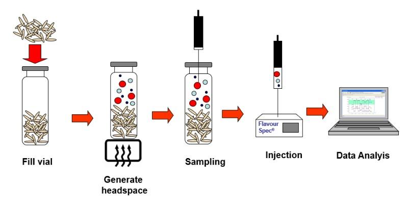 Marco Arezio - Consulente materie plastiche - Processo di analisi odori